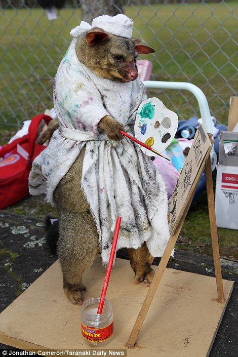 Best Dressed Dead Possum