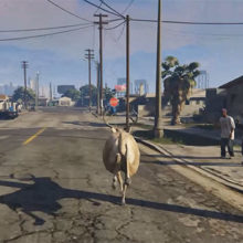 "Brent Watanabe, ""San Andreas Streaming Deer Cam"""