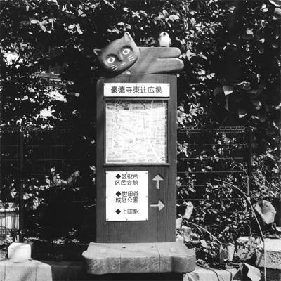 Chung-Leng Tran