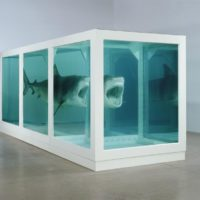 "Damien Hirst, ""The Physical Impossibility of Death in the Mind of Someone Living"""