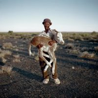 "Daniel Naudé, ""David Tieties with his three-day-old donkey. Verneukpan, Northern Cape,