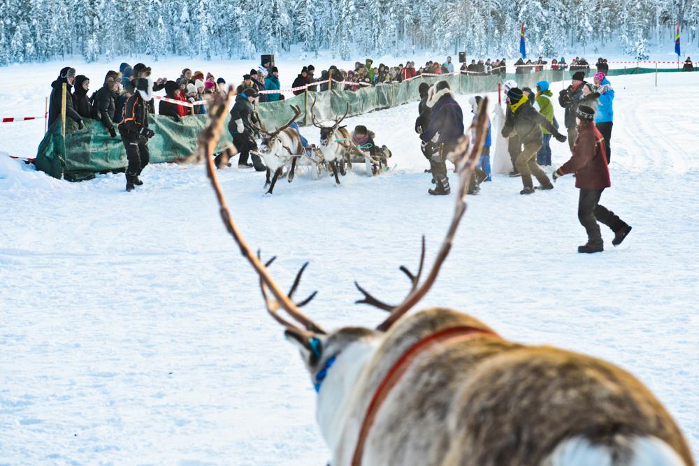 "From ""The Sámi Way"""