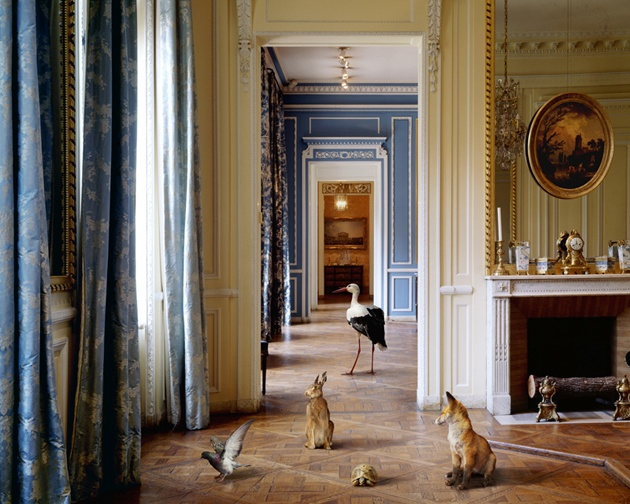"Karen Knorr, ""The Corridor"""