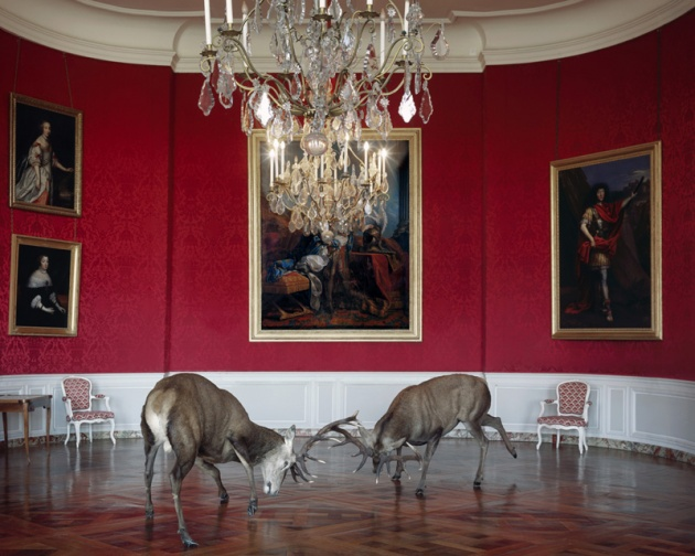 "Karen Knorr, ""The Kings Reception"""