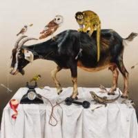"Kate Bergin, ""The Self Preservation Society"""
