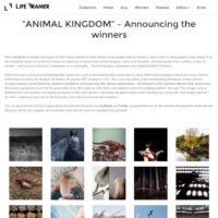 "Life Framer Photography Competition: ""Animal Kingdom"""