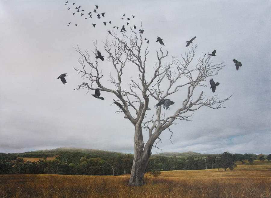 "Lisa Adams, ""Dead Tree"""