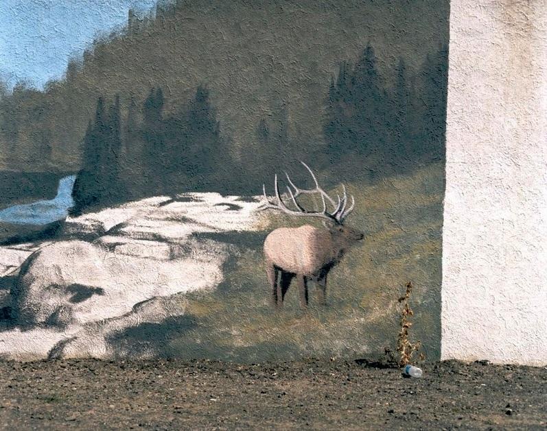 "M. Alexis Pike, ""Elk—Gooding Idaho"""