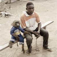 "Pieter Hugo, ""The Hyena and Other Men"""