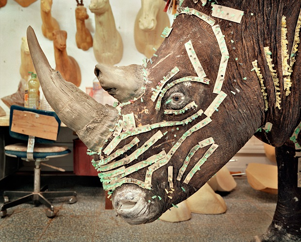 "Rafal Milach, ""Rhino in taxidermist's workshop"""