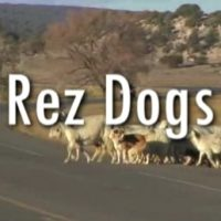 Rez Dogs Documentary