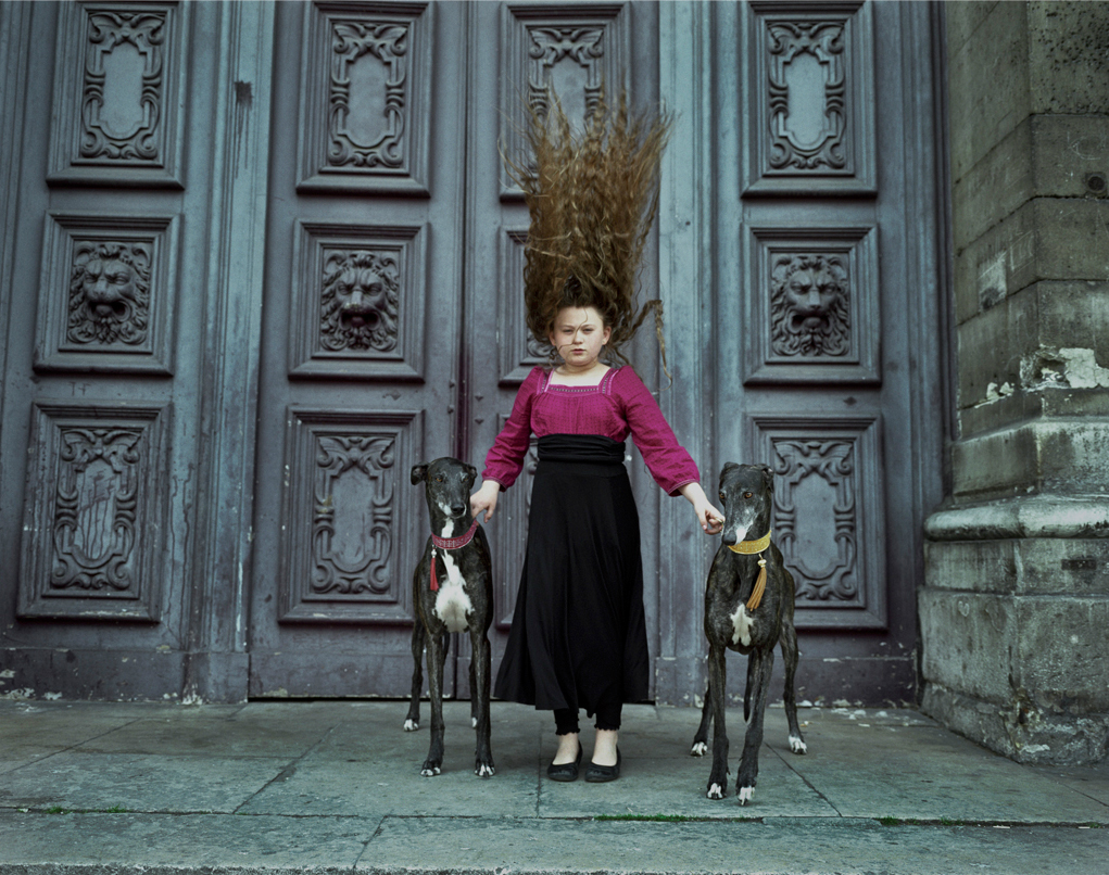 "Robin Schwartz, ""Paris Greyhound Hair, Belle de Nuit and Pioute Van Guard"" (2010)"