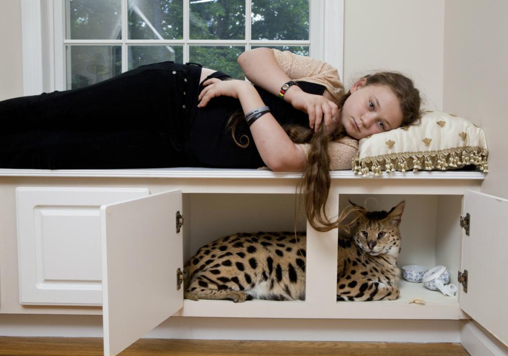 """Robin Schwartz, """"Samantha in the Cabinet"""" (2011)"""