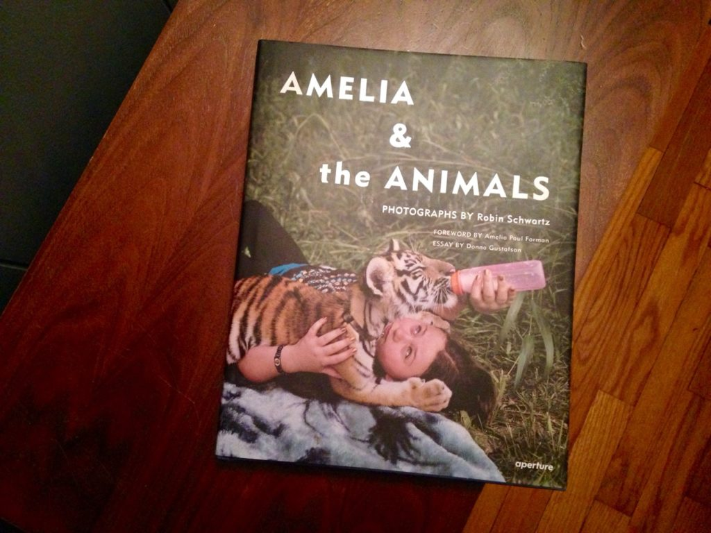 """Amelia & The Animals"" cover image, ""Lorenzo"" (2011)"