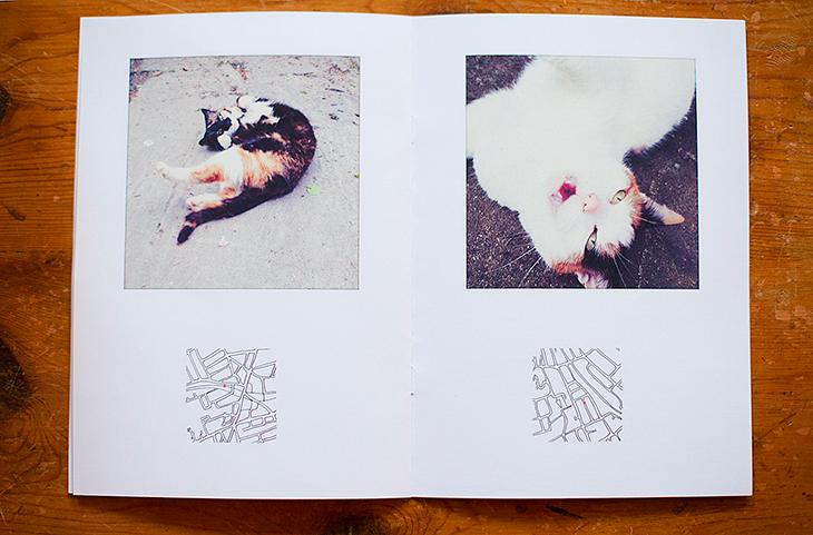 "Yogamaya von Hippel & Simon Bromley, ""Street Pussy"""