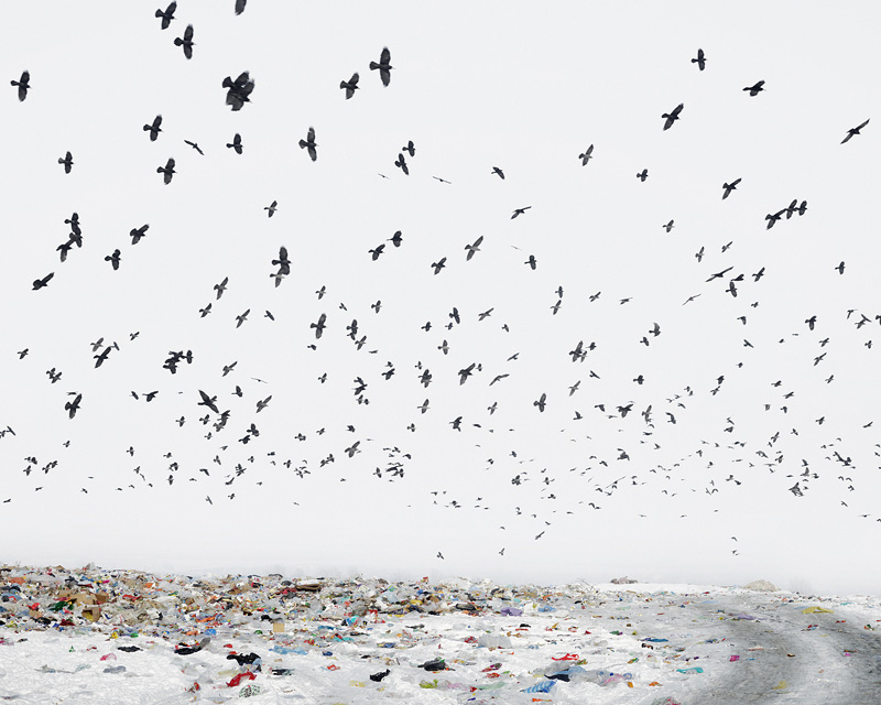 "Tamas Dezso, ""Dump (near Aiud, West Romania)"""