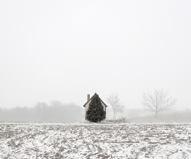 "Tamas Dezso, ""Tree and House (West Hungary)"""
