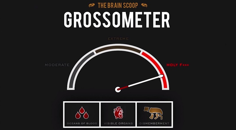 The Brain Scoop